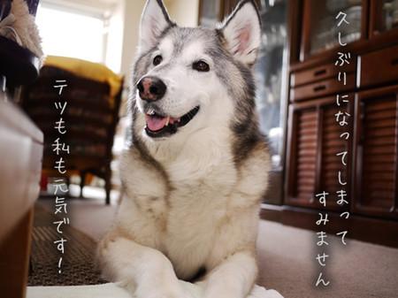 Tetsu_blog902