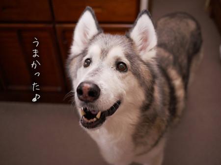 Tetsu_blog916