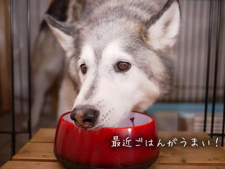 Tetsu_blog945