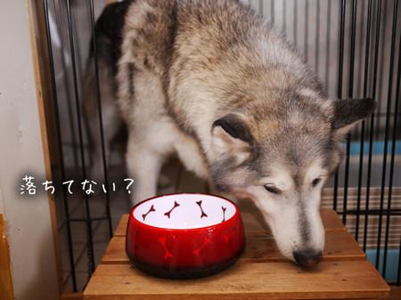 Tetsu_blog946