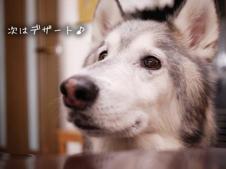 Tetsu_blog949