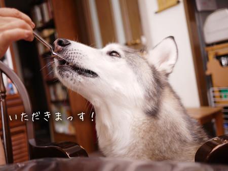 Tetsu_blog950