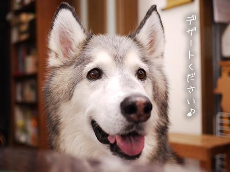 Tetsu_blog967