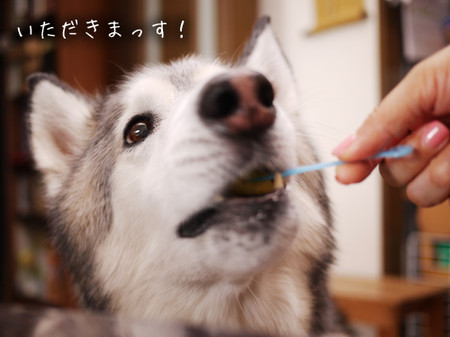 Tetsu_blog969