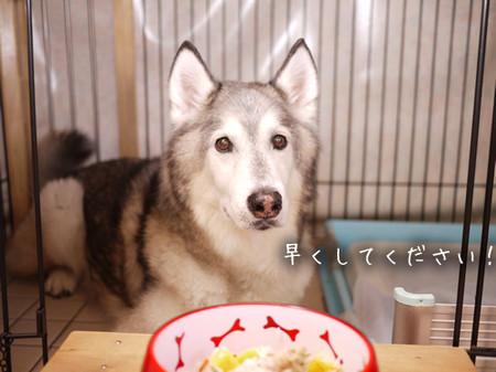 Tetsu_blog1005