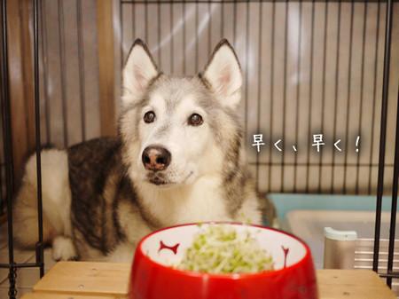 Tetsu_blog1015