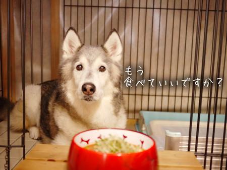 Tetsu_blog1025