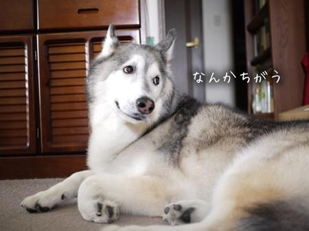 Tetsu_blog1029