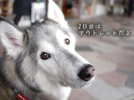 Tetsu_blog1033